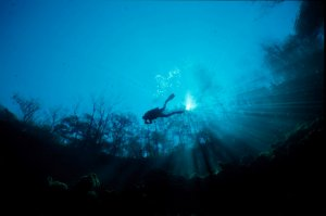 Troy Springs Underwater Diver Photo